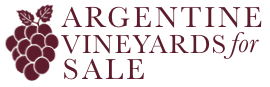 Argentine Vineyards for Sale